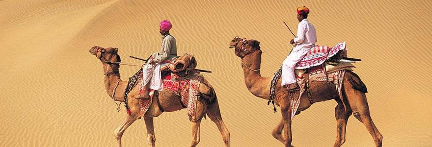 Safari en chameau